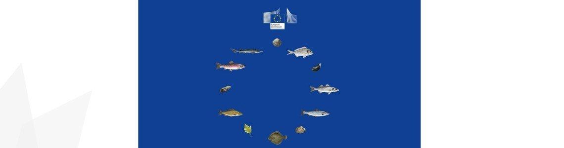 В периода 27.09.-28.09.2021 г. в град Пловдив ще се проведе петата годишна среща на Националната Рибарска Мрежа и заседание на тематична работна